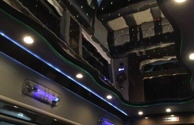 Sprinter Interior Ceiling